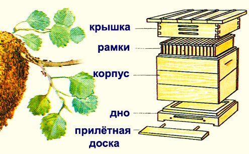Конструкция ульев